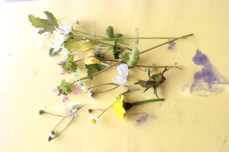 Pressed Flower Art – How To Press Flowers